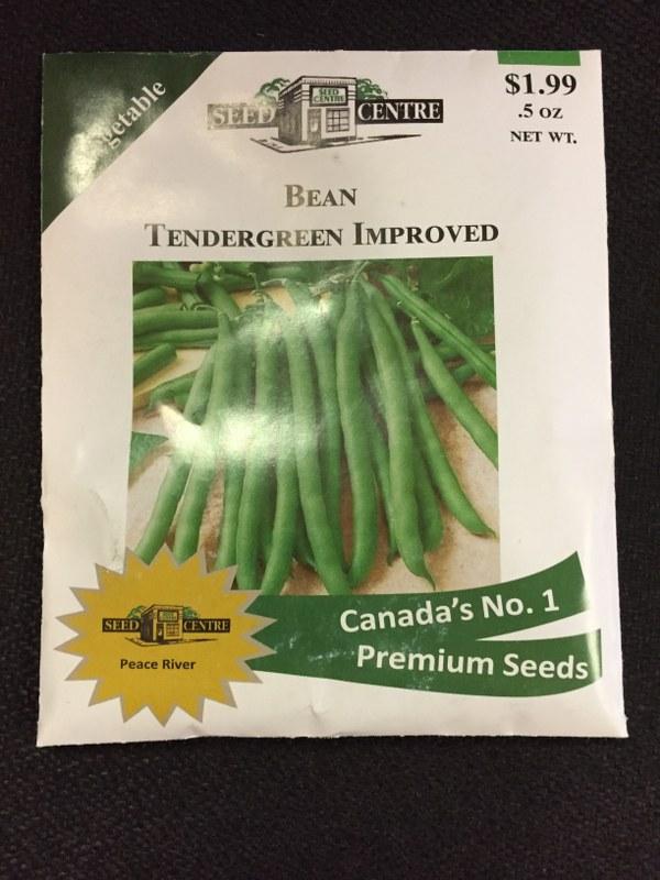 Bean - Tendergreen Improved