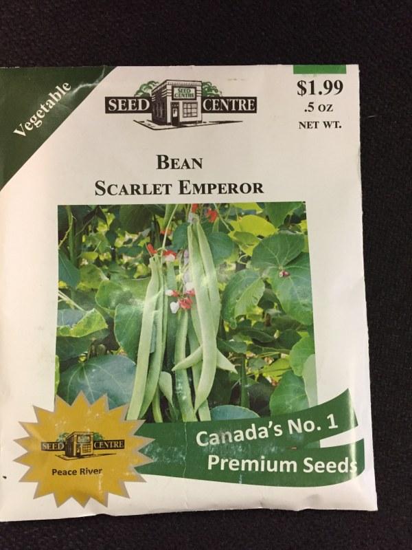 Bean - Scarlet Emperor
