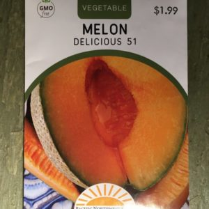 Melon Delicious 51