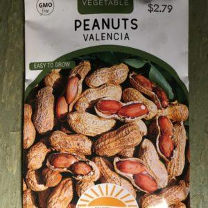 Peanuts Valencia