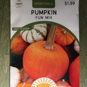 Pumpkin Fun Mix