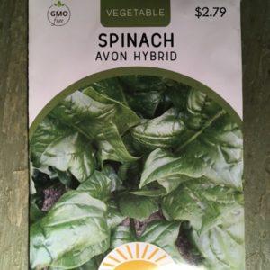 Spinach Avon Hybrid