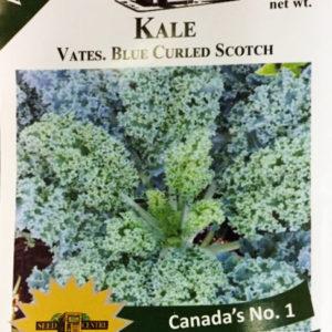 Kale - Vates Blue Curled Scotch