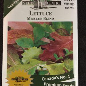 Lettuce - Mesclun Blend