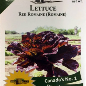 Lettuce - Red Romaine