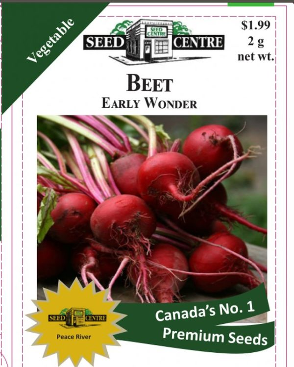 Beet - Early Wonder