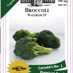 Broccoli - Waltham 29