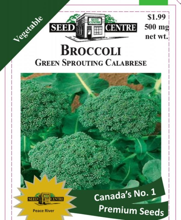 Broccoli - Green Sprouting Calabrese