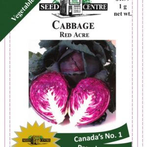 Cabbage - Red Acre