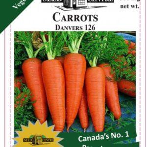 Carrots - Danvers 126