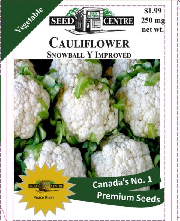 Cauliflower - Snowball Y Improved
