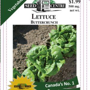 Lettuce - Buttercrunch