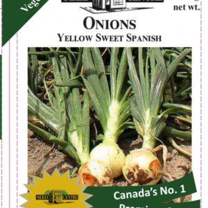Onion - Yellow Sweet Spanish