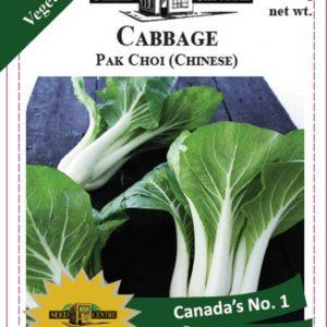 Cabbage - Pak Choi