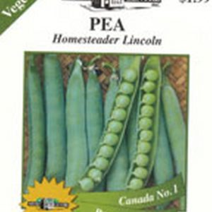 Peas - Homesteader Lincoln
