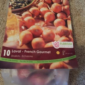 French Gourmet Shallot