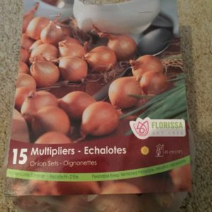 Multipliers - Onion Sets