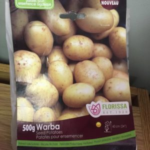 Warba Seed Potatoes