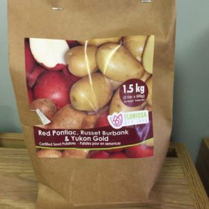 Seed Potatoes Variety Pack - Red Pontiac, Russet Burbank & Yukon Gold
