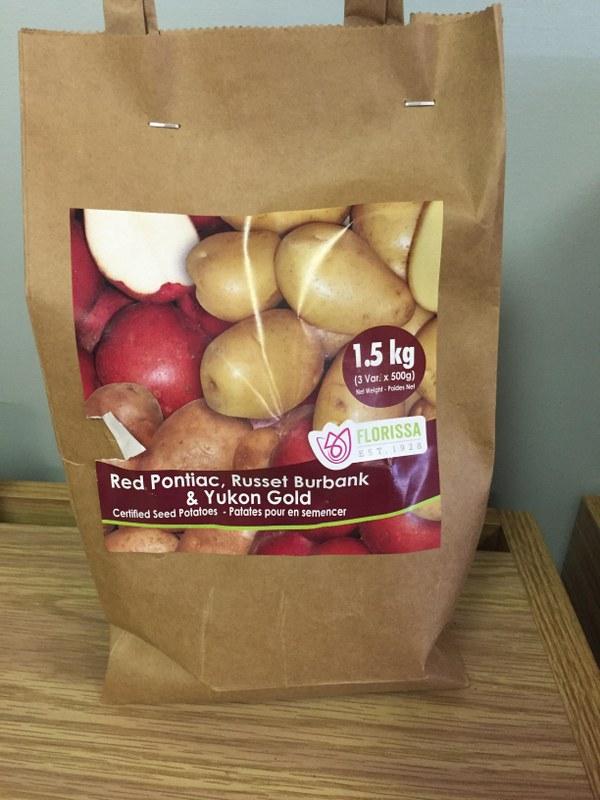 Seed Potatoes Variety Pack - Red Pontiac, Russet Burbank & Yukon Gold