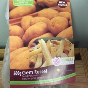 Gem Russet Seed Potatoes