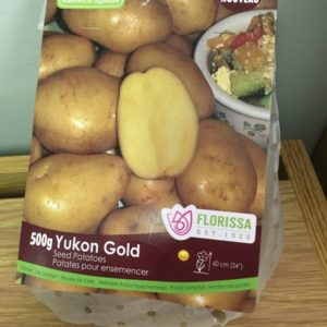 Yukon Gold Seed Potatoes
